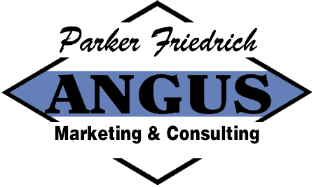 Parker Friedrich Marketing and Consulting